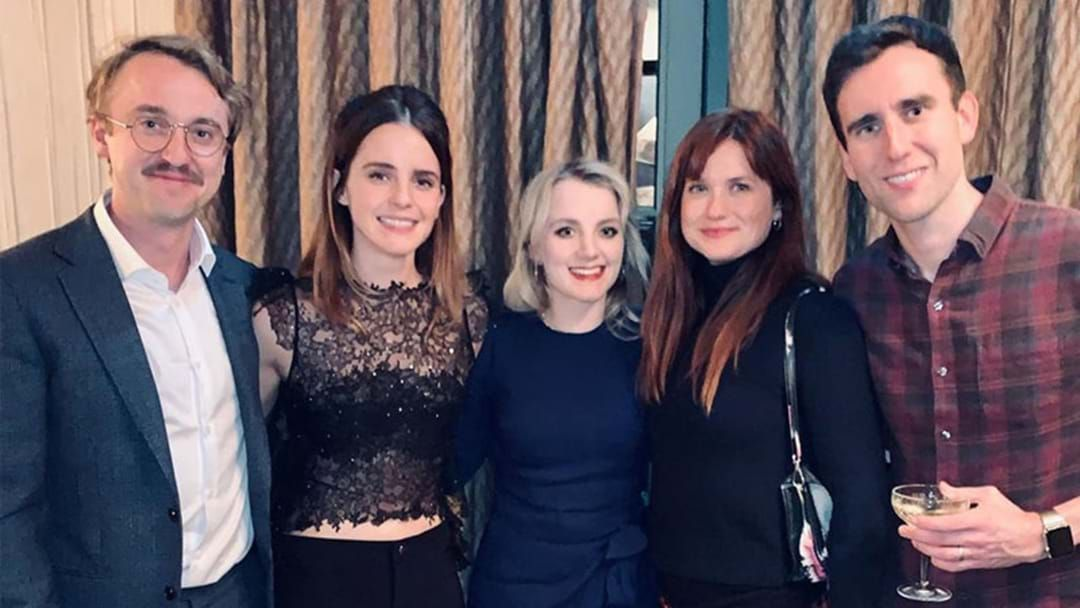 The Cast Of Harry Potter Just Reunited It S A True Christmas Gift Hit Network