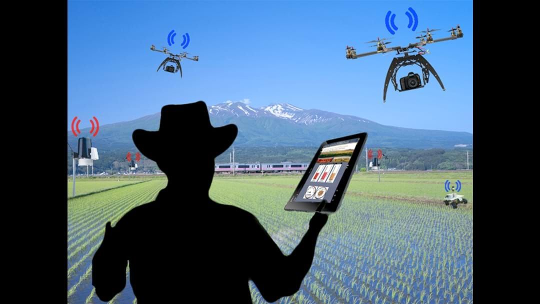 Article heading image for Is the next big Smart Farms idea in the South West?