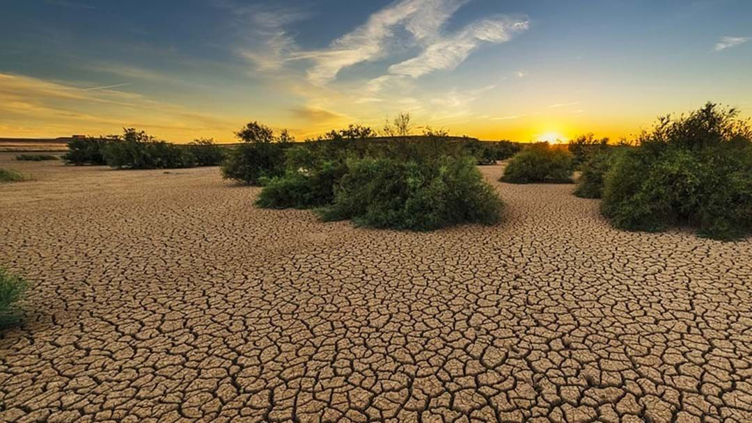Article heading image for Last Year Was Australia's Third Warmest Year On Record