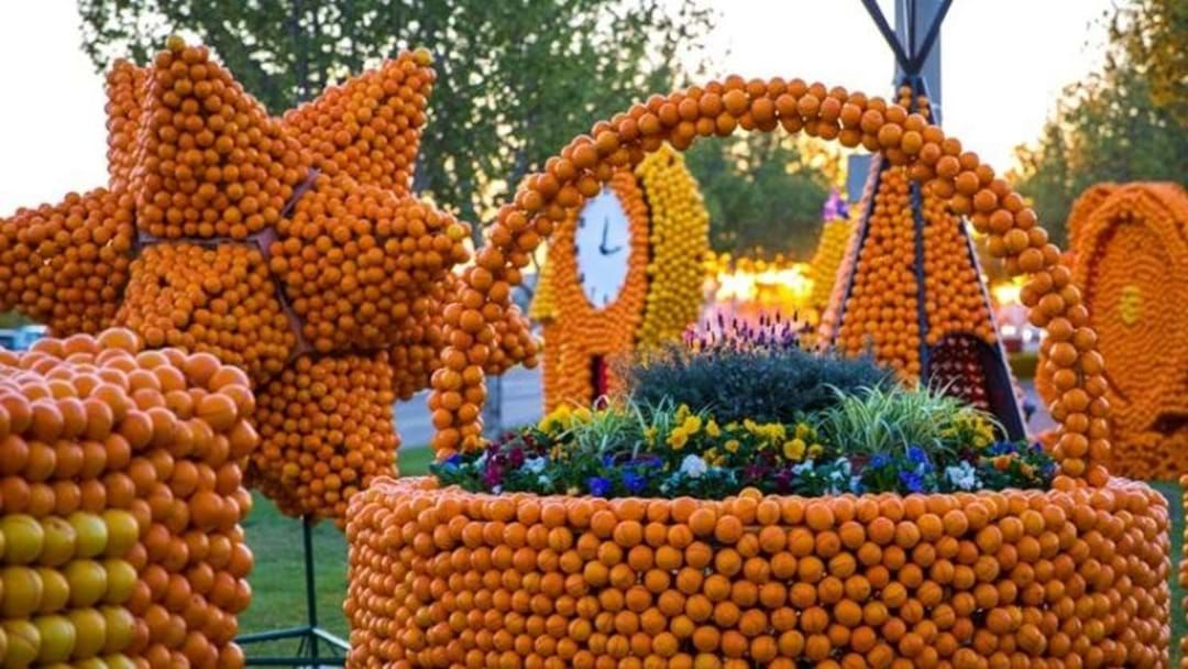 Article heading image for It's Time To Submit Entires For This Years Citrus Sculpture Competition