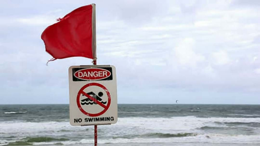 Article heading image for Shark Bumps Surfer Off Board Near Cowaramup