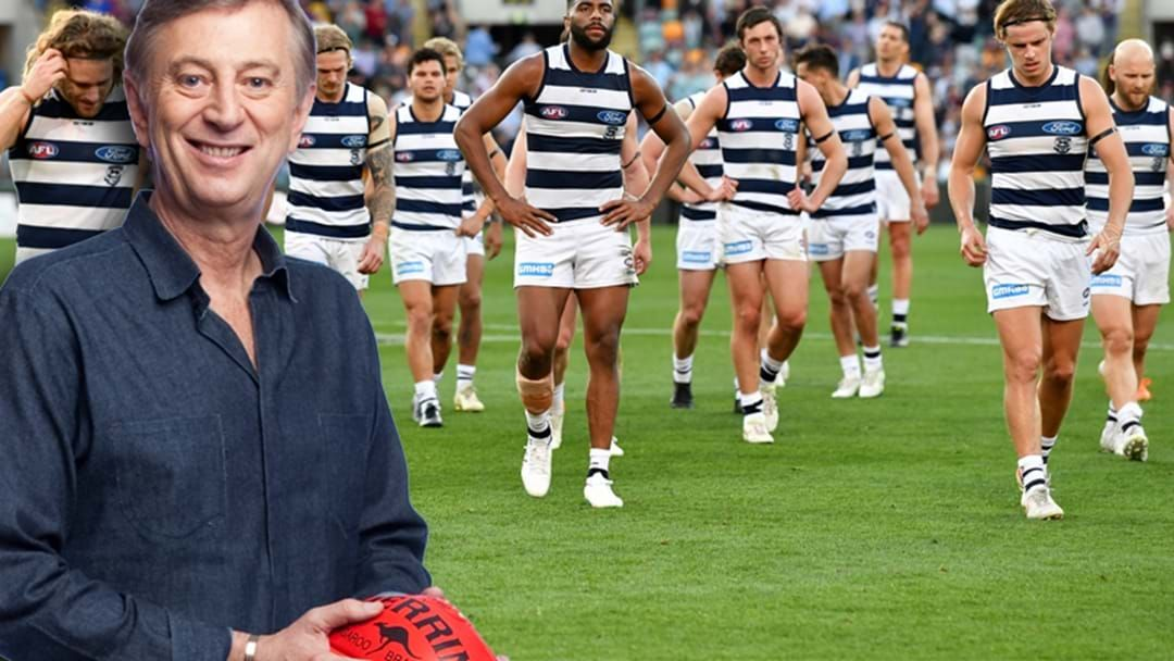 """Article heading image for """"I'm not sure about Geelong at all… Geelong Are Plodders"""""""