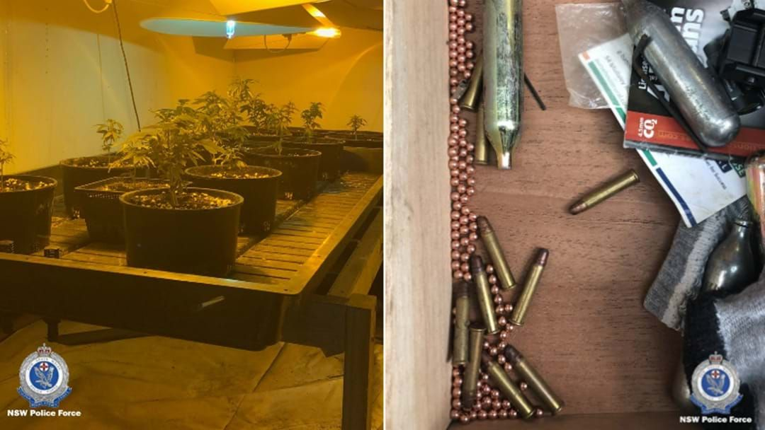Article heading image for Guns And Drugs Found In Boolaroo Police Raid