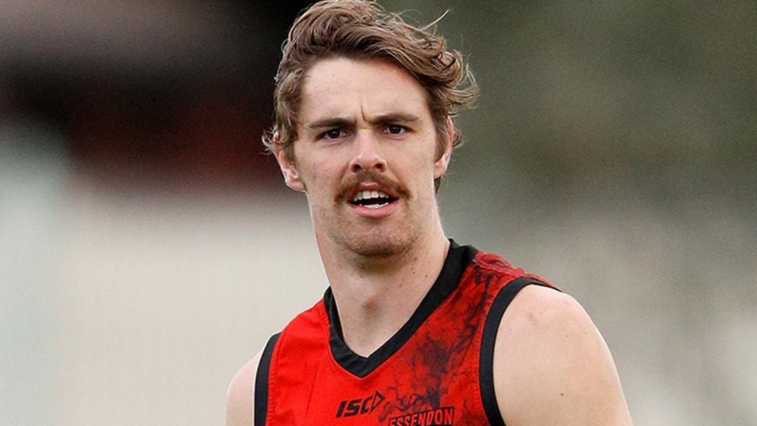 Article heading image for Joe Daniher Is Seeing A Groin Specialist In Ireland After Little Improvement