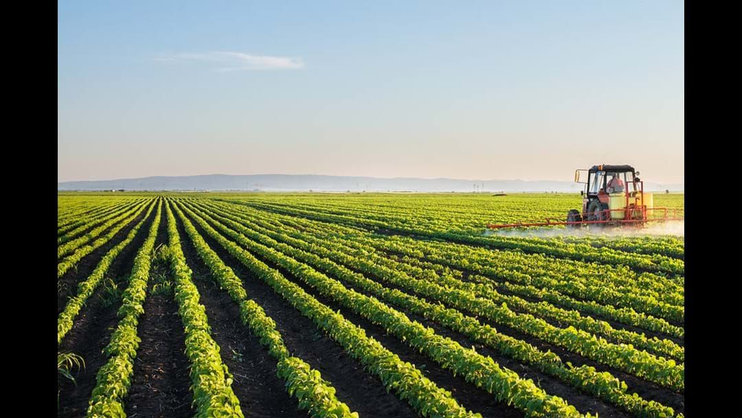 Article heading image for Agriculture Still the Most Dangerous Workplace in Australia