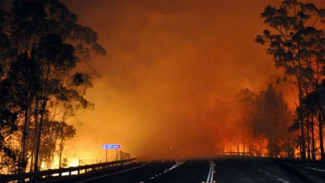 Article heading image for Tassie Told To Brace For Catastrophic Bushfires This Summer