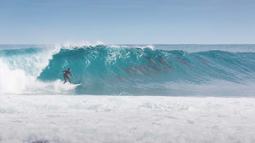 Article heading image for Photographer Captures A Perfect WA Surfing Moment