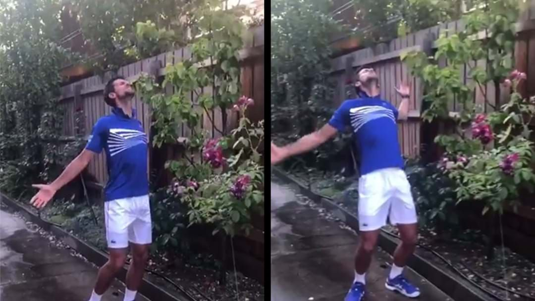 Article heading image for WATCH | Novak Djokovic Just Discovered How Glorious Running Under Sprinklers Can Be