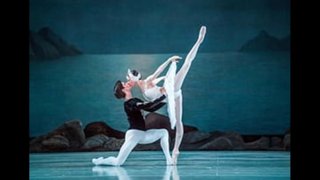 Article heading image for Swan Lake in CQ!