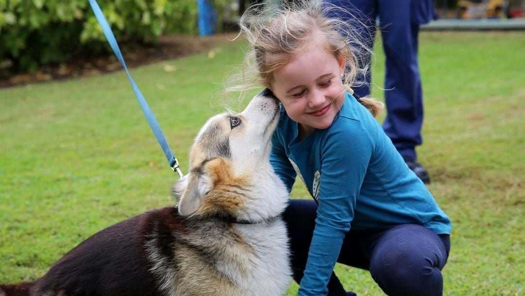 Article heading image for Kindy Kids Become 'Park Of The Pack'
