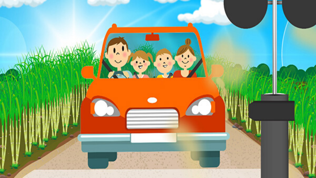 Article heading image for Sugar Cane Safety with the Train Brain Song