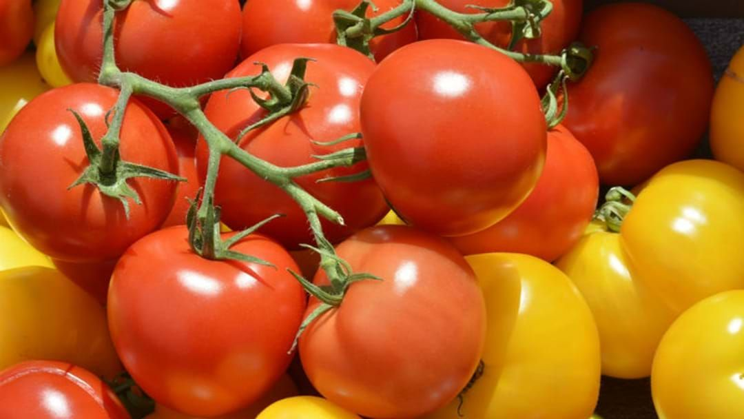 Article heading image for A Tomato Festival Is Coming To Sydney
