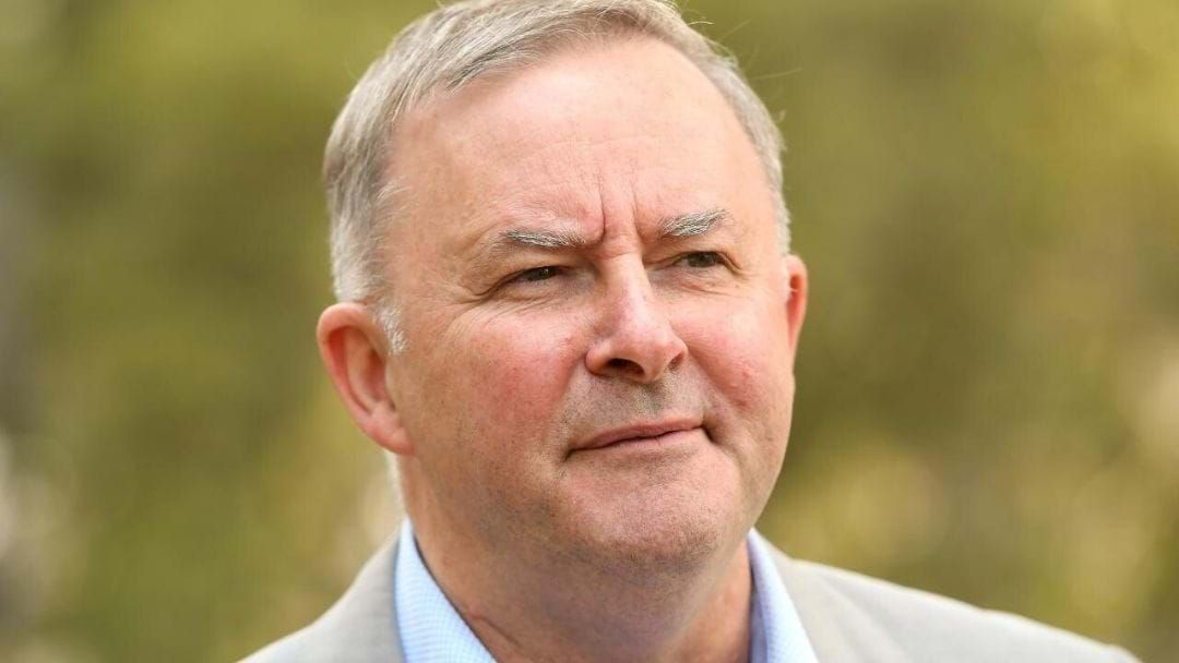 Article heading image for Anthony Albanese Addresses Cannabis, Coal & Climate Change