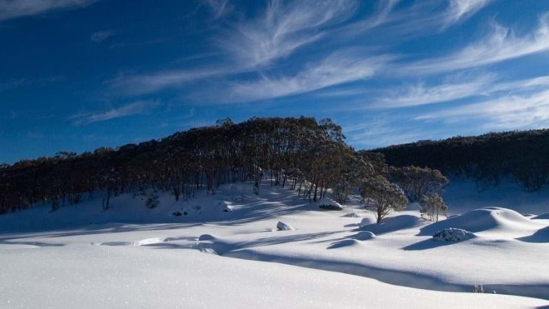 Article heading image for It's Time To Jump Back On The Slopes For The Mt Baw Baw Opening Weekend!