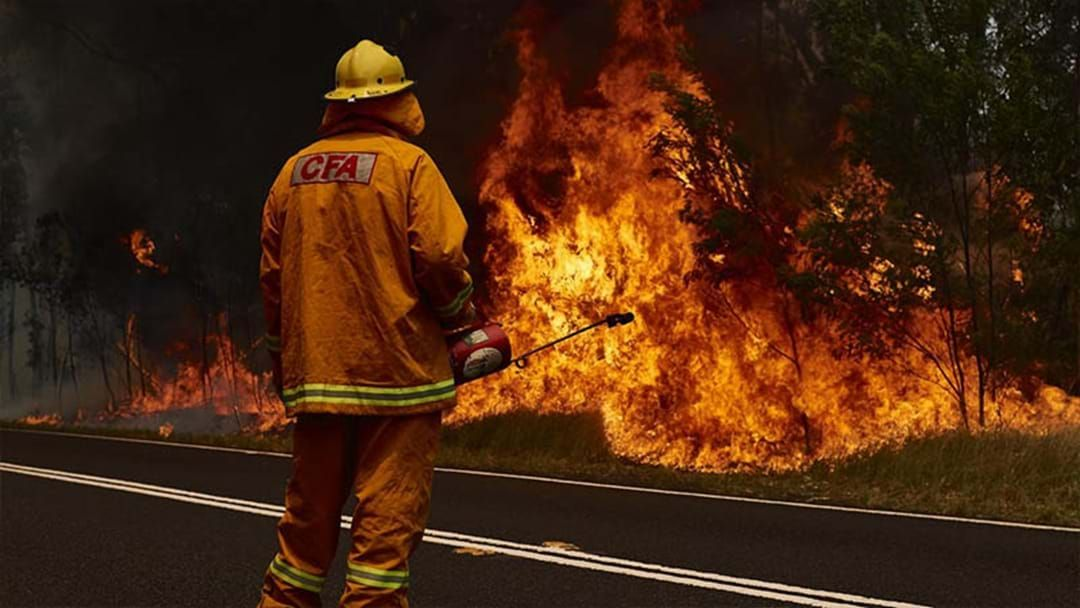 Article heading image for 51-Year-Old Bloke Charged For Lighting NSW Bushfire To Protect Cannabis Crop