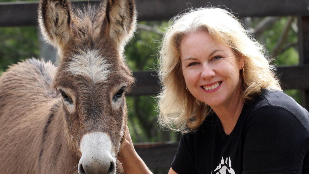 Article heading image for COWPER: Animal Justice Candidate Kellie Pearce Is Running for the Animals