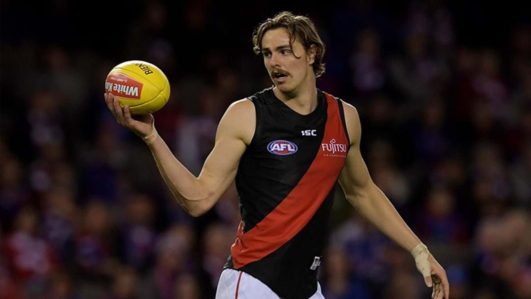 Article heading image for Joe Daniher Ruled Out For The Season