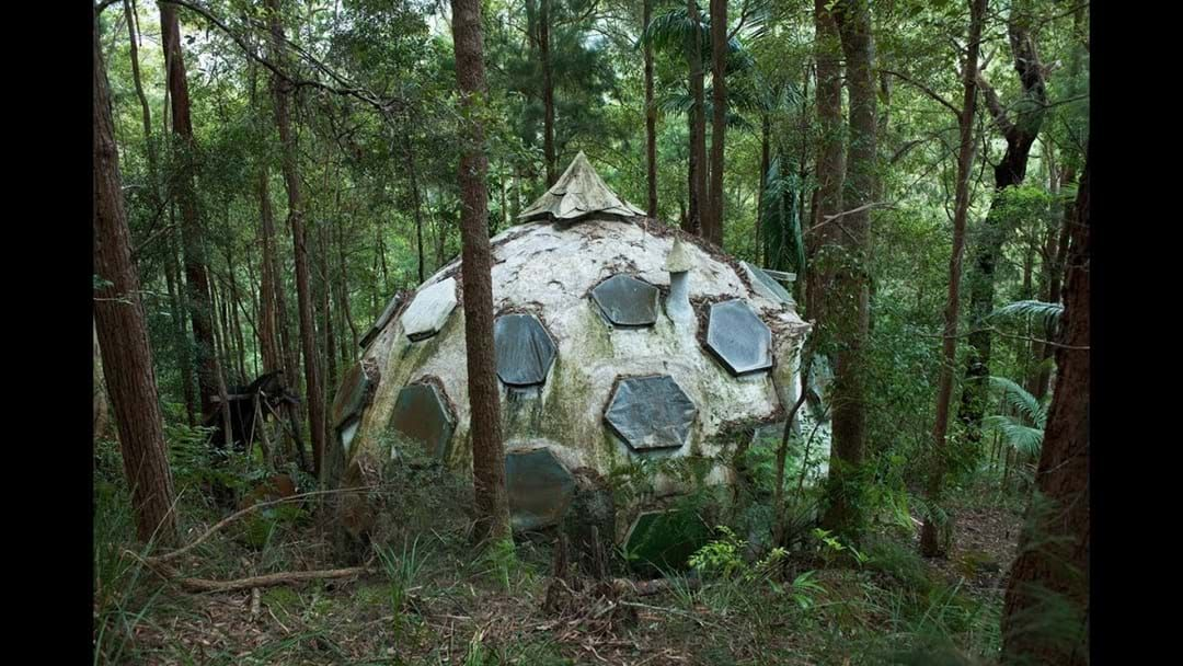 Article heading image for Tofu Mungbean from his yurt, off the grid, somewhere west of Wauchope