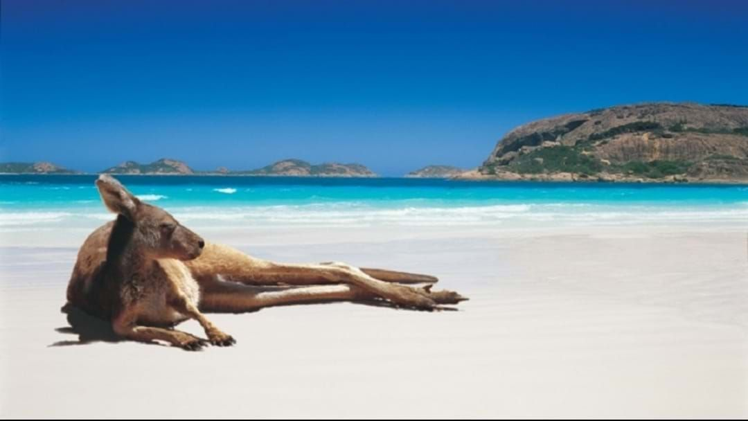 Article heading image for WHAT'S ON THIS LONG WEEKEND! - Sport, sport and more SPORT in ESPERANCE