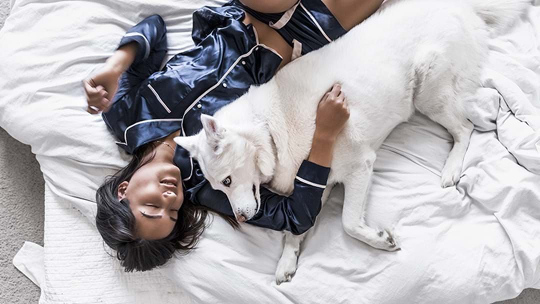 Article heading image for Apparently Sleeping With Your Dog Is Actually Really Good For You