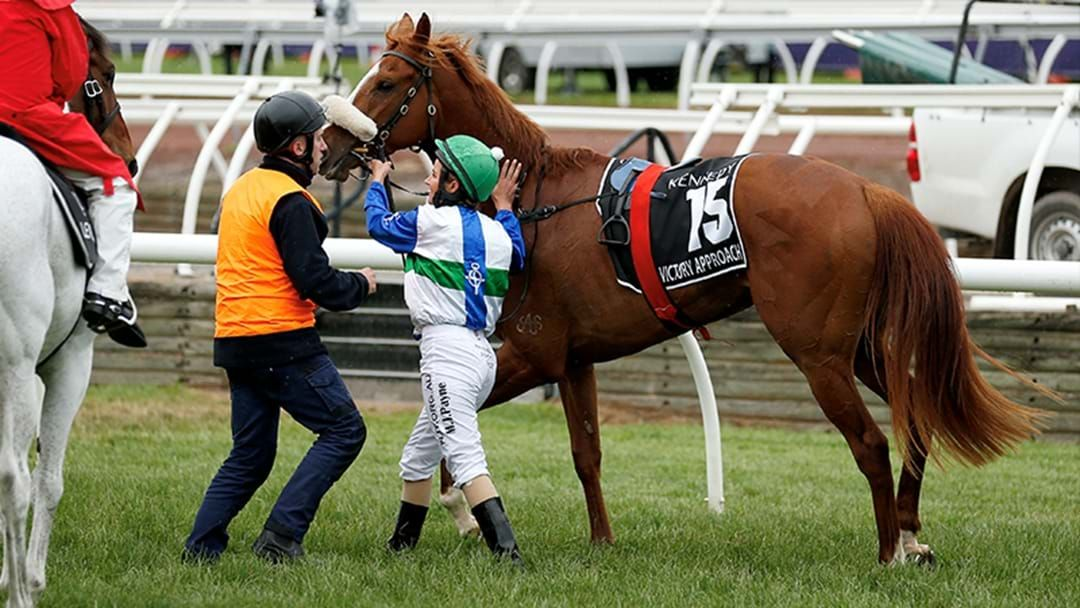 Article heading image for Jane Kennedy Reveals The Issue That Caused Her Horse Victory Approach To Finish Last