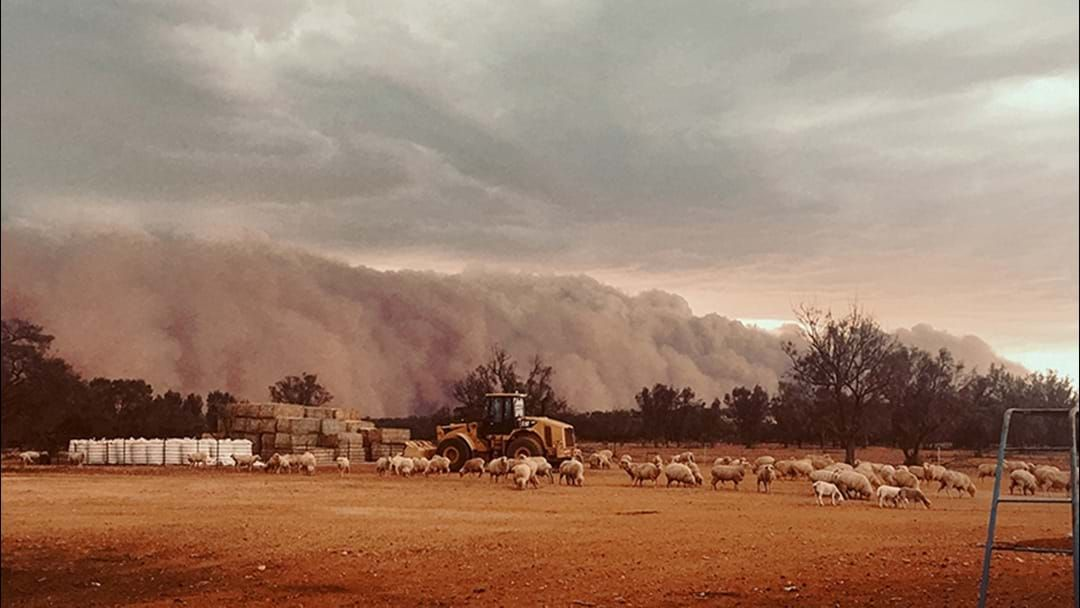 Article heading image for A MASSIVE Dust Storm Is Heading For Sydney So Take Care