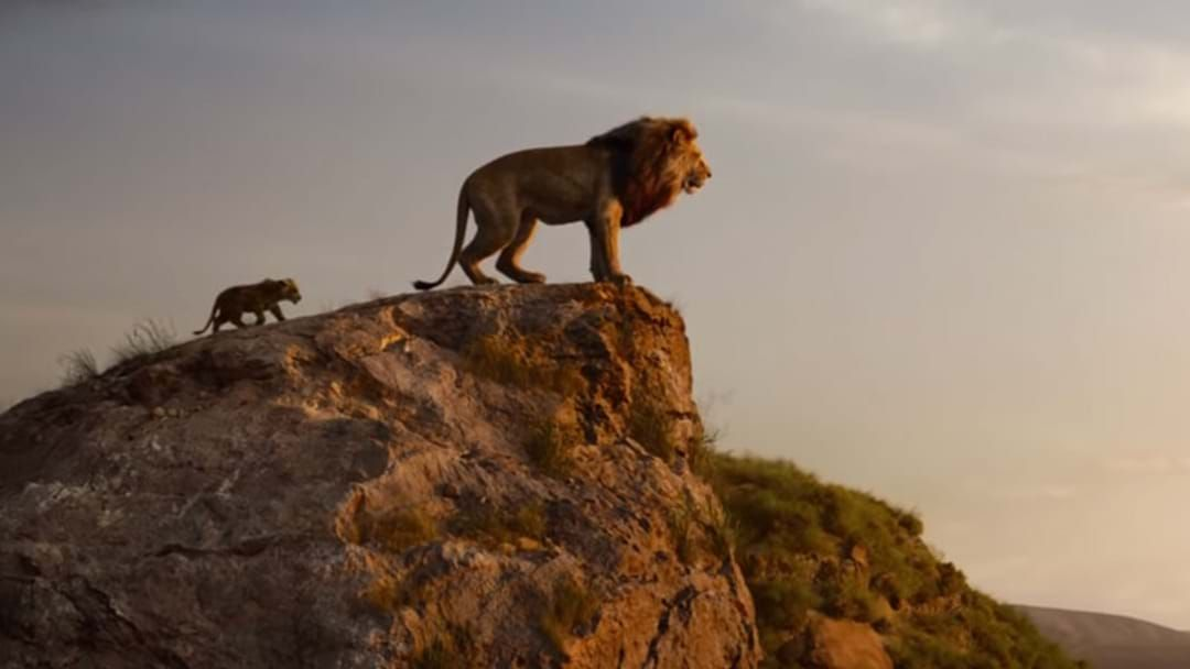 Article heading image for The New Lion King Movie Trailer Is Here So Hakuna Matata
