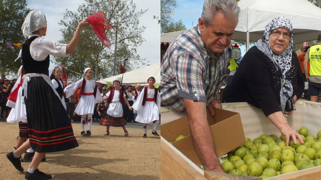 Article heading image for CANCELLED - Shepparton Albanian Harvest Festival!