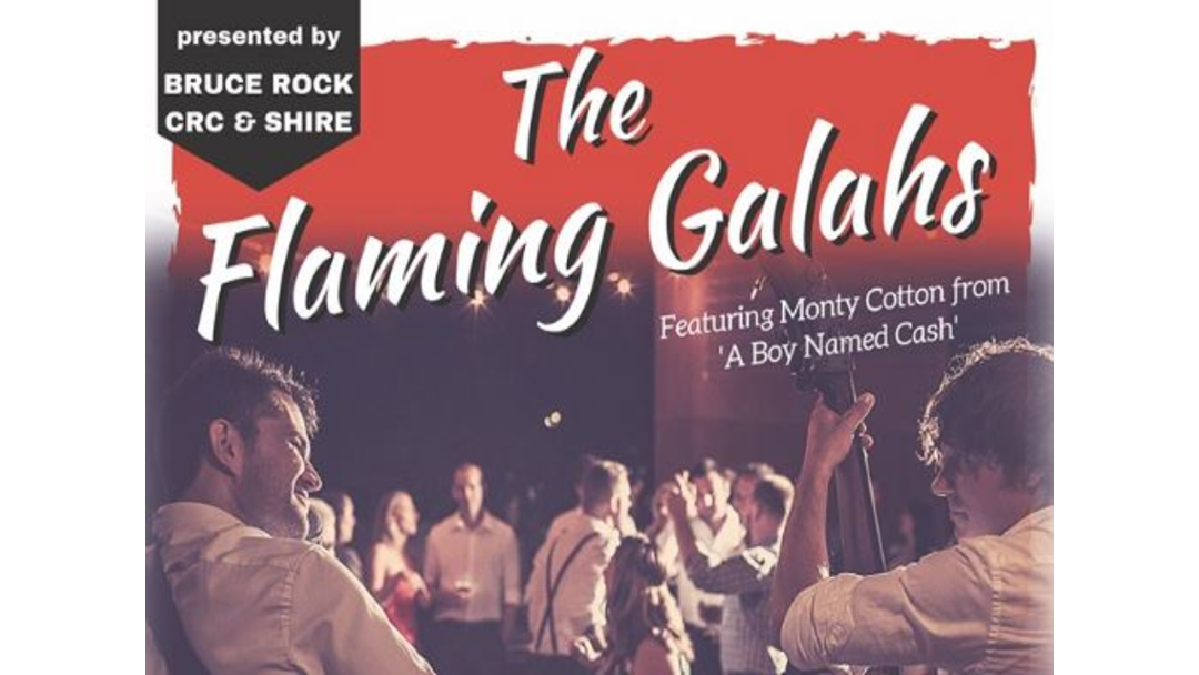 Article heading image for The Flaming Galahs