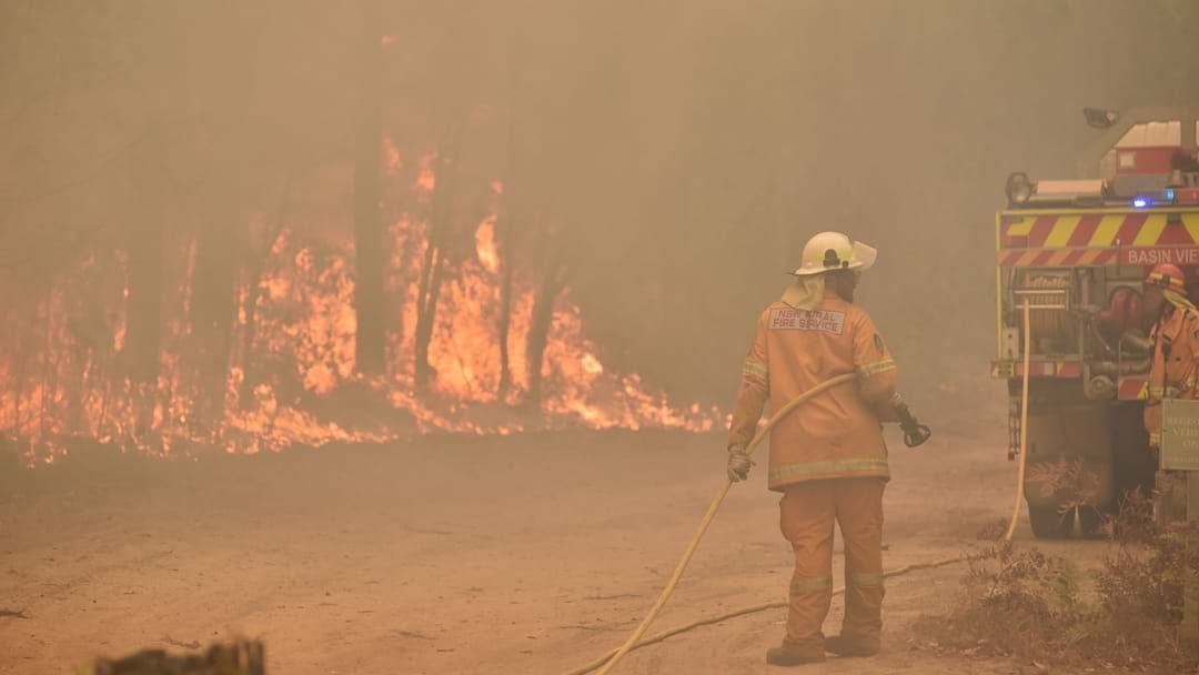 Article heading image for How You Can Actually Help During The Bush Fires