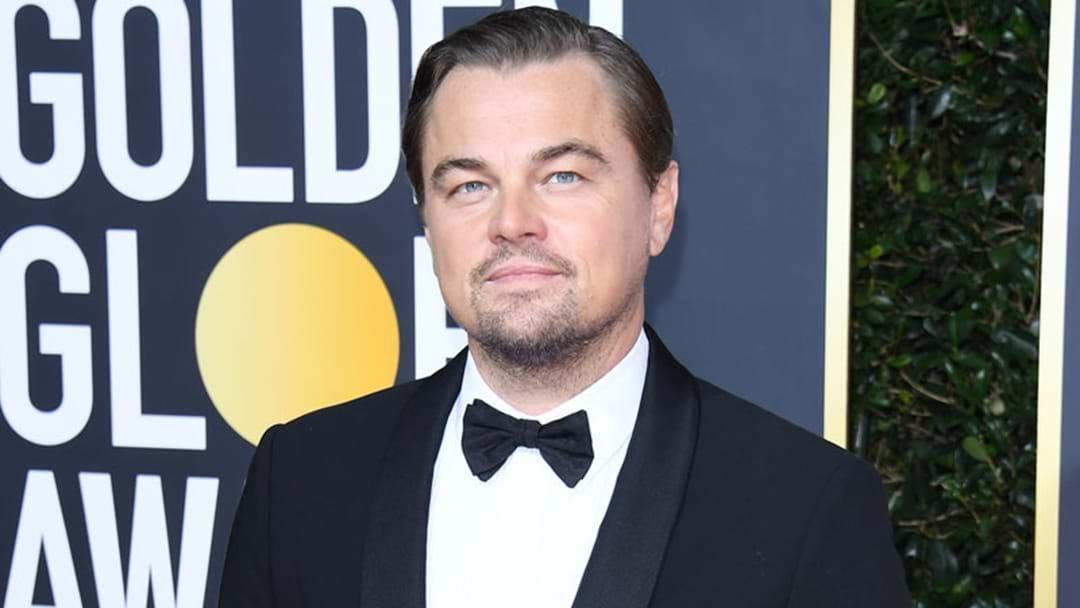 Article heading image for Leonardo DiCaprio's Organisation Has Pledged $3 Million To New Australian Wildlife Fund