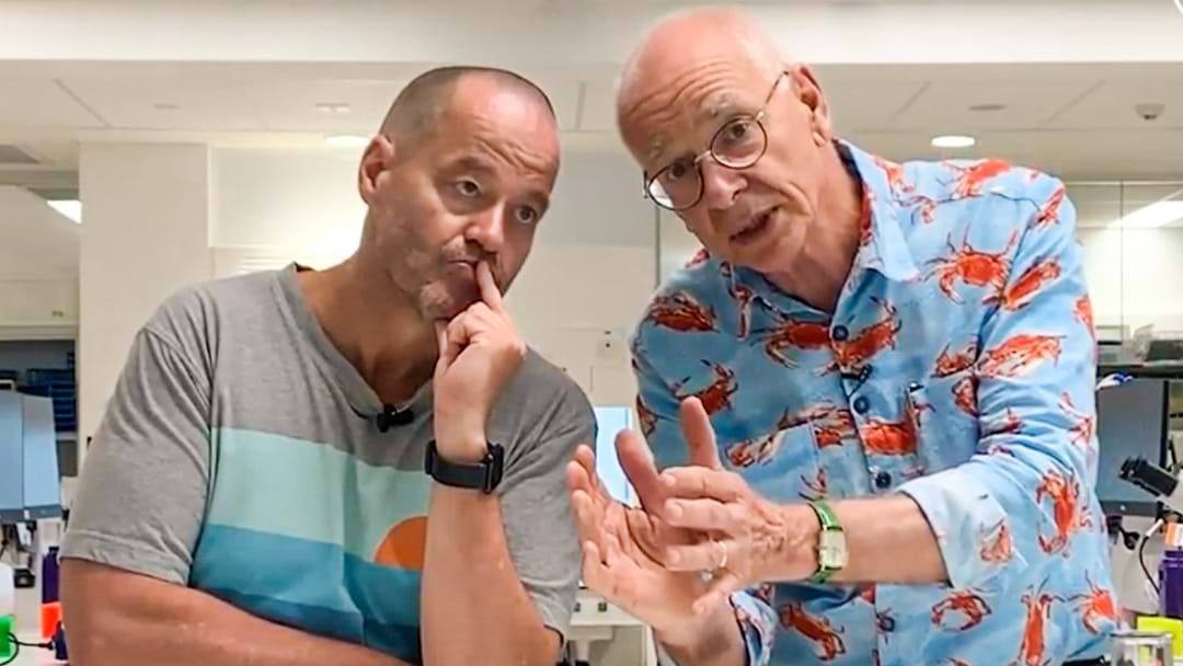 Article heading image for Dr Karl Tells Us How Your Kids Can Win Thousands Of Dollars With Science
