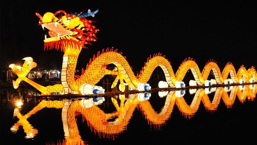 Article heading image for Birrarung Marr Will Be Illuminated By Light Up Festival Melbourne This Month