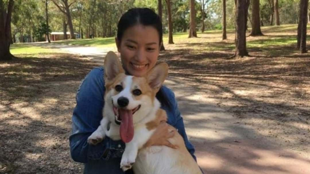 Article heading image for A Gold Coast Woman Has Been Reunited With Her Stolen Dog After Six Long Months