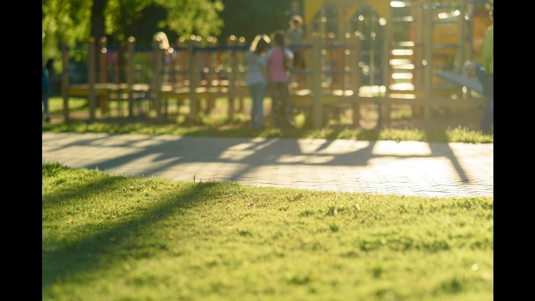 Article heading image for What future do you want for Wodonga's playgrounds?