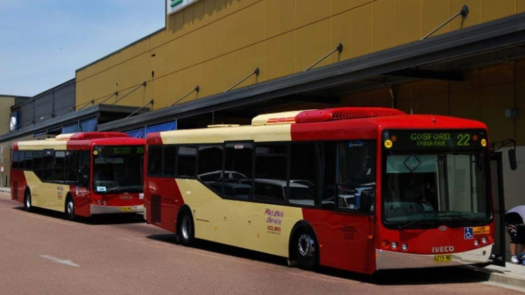 Article heading image for Central Coast's Red Bus Services Up Against Multinational Company