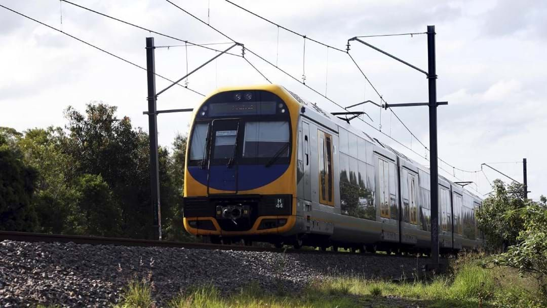 Article heading image for Buses Replace Trains To Sydney After Kangaroo Hit