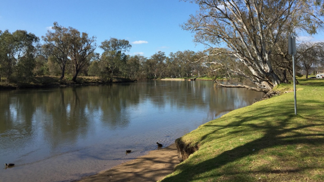 Article heading image for Albury Police Search For Missing 21 Year Old Murray River Swimmer