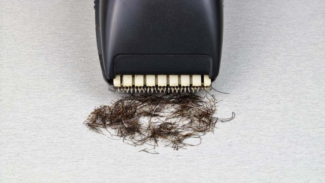 Article heading image for People At Drouin Secondary College Are About To Lose Their Hair!