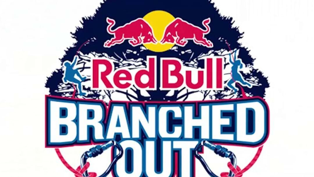 Article heading image for Wellington To Host Red Bull Branched Out Competition