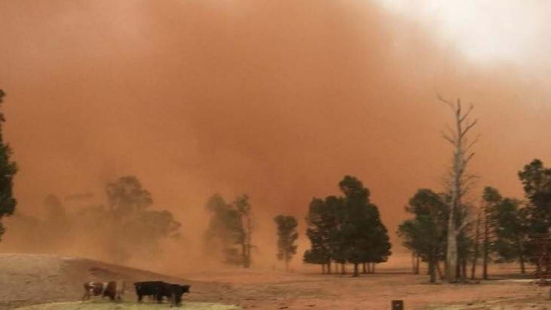 Article heading image for Riverina hit by HUGE dust storm