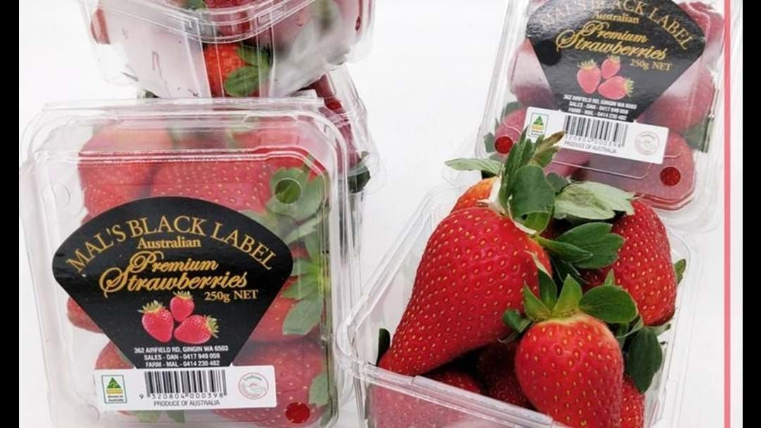 Article heading image for South Australia Added To Strawberry Contamination Scandal