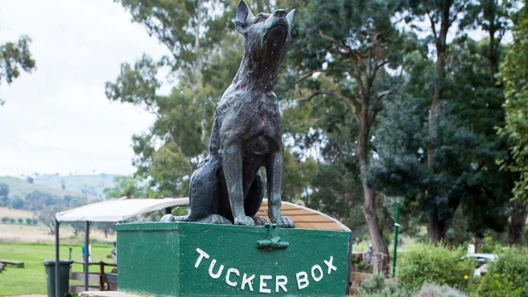 Article heading image for IMPORTANT NEWS! The Dog Is Back On His Tuckerbox In Gundagai!