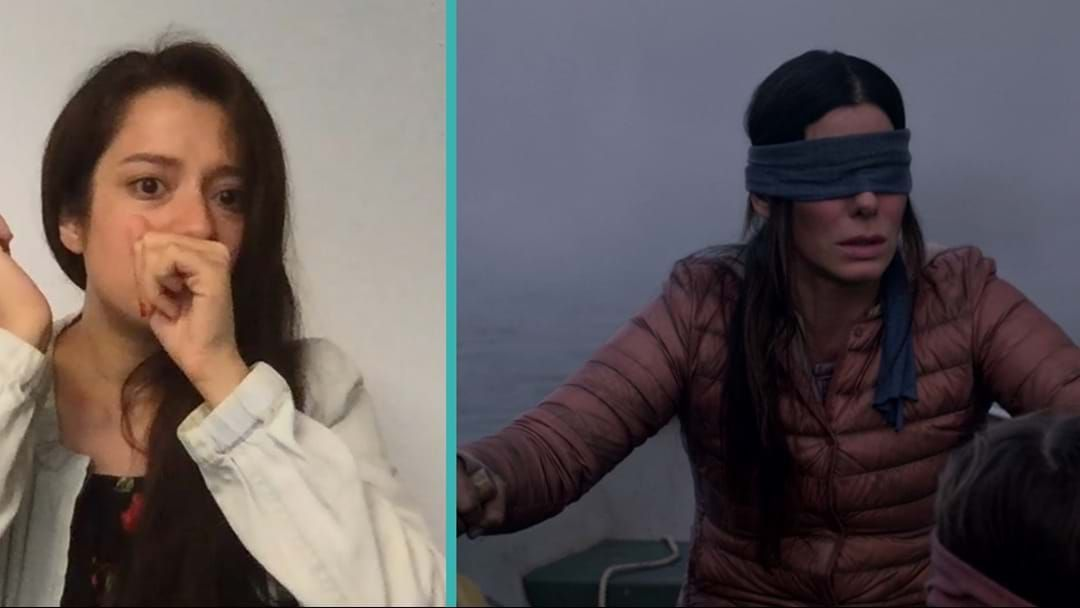 Article heading image for 50 Thoughts I Had When Watching Netflix's 'Birdbox'