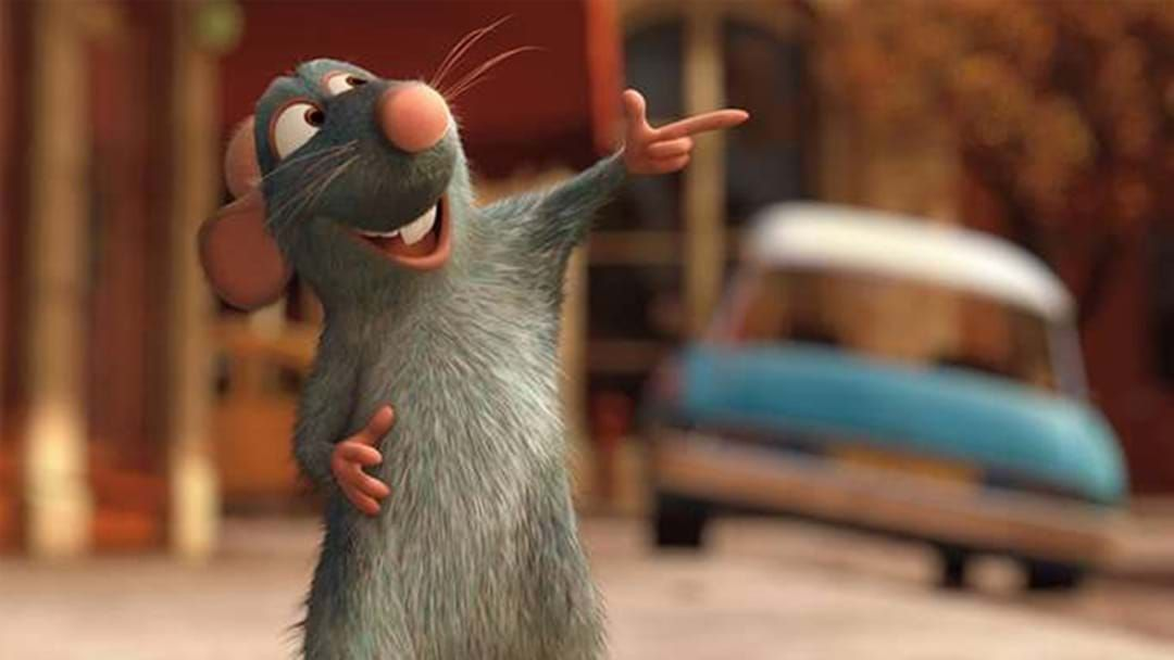 Article heading image for PSA: A Ratatouille TikTok Musical Is Happening & Yes The Whole Cast Will Be There!