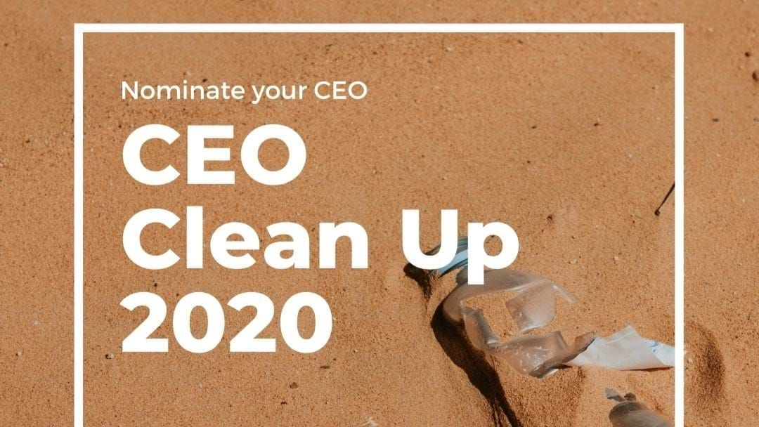 Article heading image for Take 3 CEO Clean Up