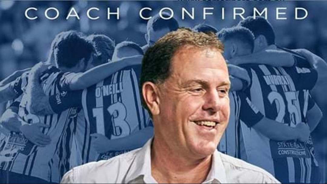 Article heading image for Mariners Officially Sign New Coach Allen Stajcic For Three Years