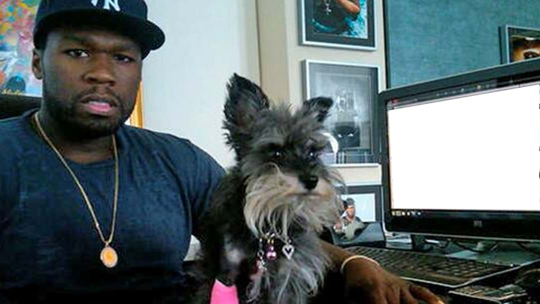 Article heading image for 50 Cent Named His Dog After A Celebrity He Hated
