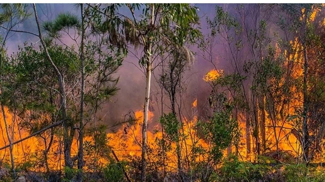 Article heading image for Prescribed Burn Operations Will be Undertaken Across the South Burnett