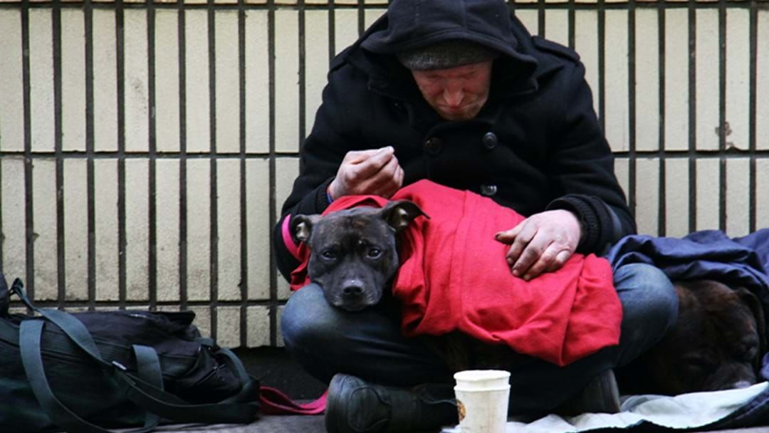 Article heading image for A Terrifying Report Shows An Increase In South Australians Being Homeless For The First Time